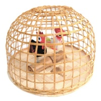 Wooden Chicken Coop